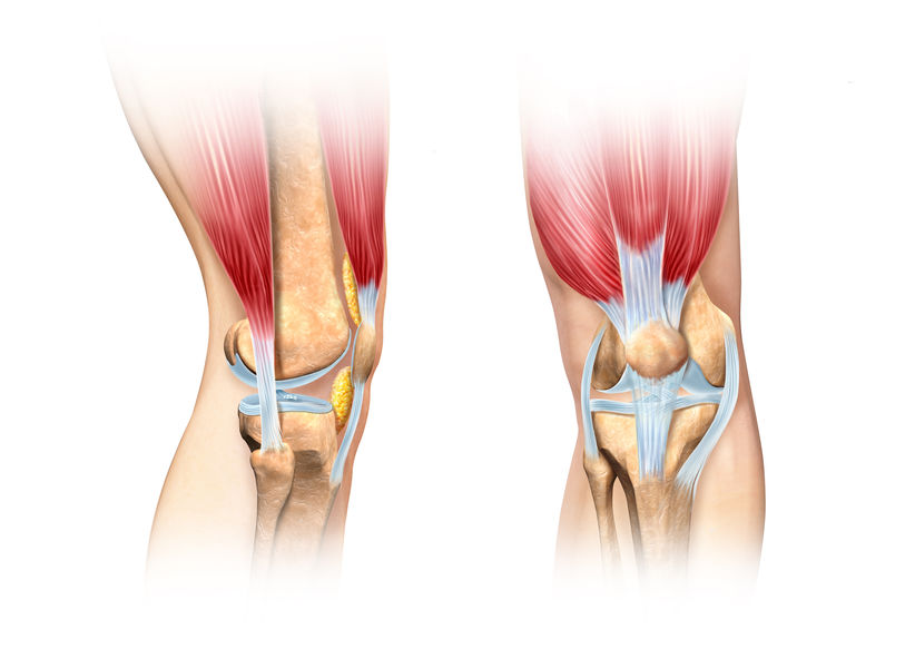 Uszkodzenia ścięgien i więzadeł kończyn górnych i dolnych